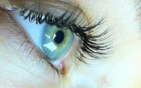 Eyelash Extensions St. Louis